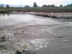 090728雨竜川.JPG